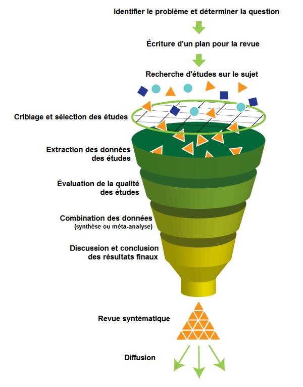 Revue_systématique2